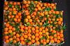 Rungis (carelita&bidou) Tags: marché rungis