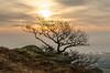 Backlit! (andythomas390) Tags: sunrise dawn sun cloud nikon d7000 18200mm eastby northyorkshire yorkshiredales