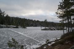 Charlie's Lake Hiking Trail (HalifaxTrails.ca) Tags: kearney lake halifax hiking novascotia nature winter snow ice hike