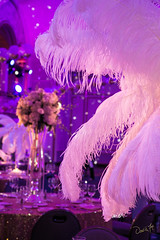 David Fox Photographer MPINE MPI MPI/NE (David Fox, Photographer) Tags: eventphotography decor tabledecor feathers gala boston mpine parkplaza davidfoxphotograher