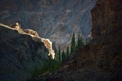Landscape along the Indus River, India 2016 (reurinkjan) Tags: india 2016 ©janreurink himachalpradesh spiti kinaur ladakh kargil jammuandkashmir indusvalley indusriver sengetsangpo sengekhambab himalayamountains himalayamtrange himalayas landscapepicture landscape landscapescenery mountainlandscape