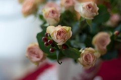 In Every Season (Captured Heart) Tags: roses christmasroses flowers