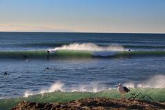 Steamers Lane (peaktopeakphotography) Tags: cali california santa cruz norcal surf surfing surfphotography steamerlane waves