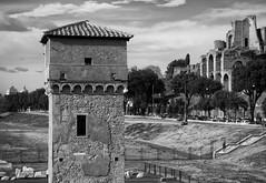 Fragments of Empire (Robert Barone) Tags: circomassimo italia italy panasonicgm1 roma rome ancientrome blackandwhite commute fragmentsofempire noiretblanc blackwhite blancoynegro architecture