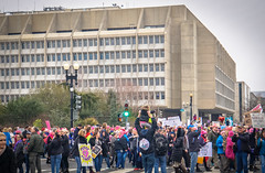 2017.01.21 Women's March Washington, DC USA 00101