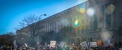 2017.02.04 No Muslim Ban 2, Washington, DC USA 00540