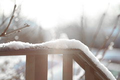 softly snowing (Dotsy McCurly) Tags: soft softly snowing cold winter beautiful nature trees branches railing sun sunlight light dof bokeh highkey canoneos5dmarkiii nj
