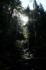 PDSCF1965 (Adzuki Darling) Tags: parc national du fjorddusaguenay september 2016