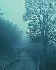 #Chamundi hills steps.#mysuru#karnataka Heritage city Mysore (supreethp1) Tags: chamundi karnataka mysuru