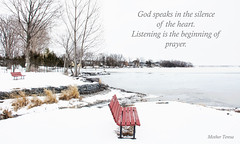 (Jolynn's Photography) Tags: winter landscape scenery snow water bench trees quote