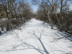 Ah the Red Cedar River in the cold. (Tim Kiser) Tags: 2015 20150227 capitalregion eastlansing eastlansingmichigan eastlansinglandscape february february2015 img7321 inghamcounty inghamcountymichigan lansingmetropolitanarea msu msulandscape michigan michiganstate michiganstateuniversity michiganstateuniversitylandscape michiganlandscape redcedarriver redcedarriverlandscape centralmichigan frozenriver frozenriverlandscape icecoveredriver icyriver landscape midmichigan river riverlandscape riverbanktrees riverinelandscape riversidetrees snowcovered snowcoveredriver snowylandscape southcentralmichigan stream streamlandscape sunny sunnylandscape treebranchshadows treeshadows view viewfromabridge winterlandscape wintertrees