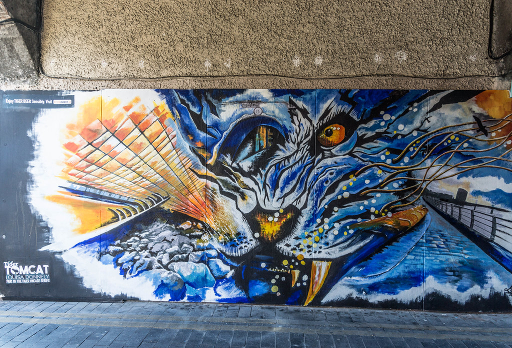 STREET ART [LIMERICK] REF-105082
