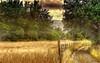 _before the storm_ (* landscape photographer *) Tags: italy primavera del europe valle natura campo prima paesaggio temporale lucania 2015 nikond90 salvyitaly
