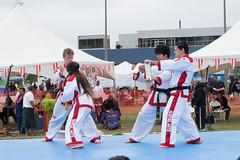 DC0_1253 (Eisbier) Tags: sport alaska training demo centennial do martial arts martialarts taekwondo celebration anchorage tae tkd kwon champ champmartialarts