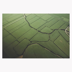 (Nicolas Gerber) Tags: green field view map aerialview aerial scape nohorizon jigh straightenthingsout statethefacts meanwhileinthenetherlands