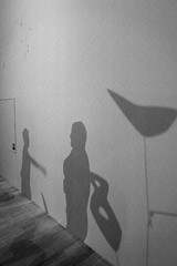Icnes Amricaines - RMN - Grand Palais - SFMOMA Collection (mArc ferr) Tags: paris museum shadows sfmoma exhibition muse collection exposition popart calder alexandercalder grandpalais rmn icnesamricaines