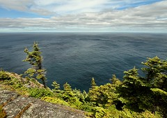 On the Edge (Karen_Chappell) Tags: ocean blue trees sky seascape green clouds newfoundland landscape scenery scenic wideangle atlantic nfld eastcoast atlanticcanada canonefs1022mm eastcoasttrail avalonpeninsula cobblerpath