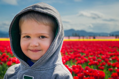 Boy portrait in red tulip. (Grace Alone) Tags: flowers boy red portrait flower color face field spring day tulips outdoor farm