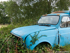 Epave 2009 - Renault 4 F4 (Deux-Chevrons.com) Tags: auto classic car barn automobile 4 automotive voiture renault abandon coche rusted oldtimer wreck trusty derelict find f4 wrecked r4 abandonned rus classique youngtimer renault4 épave barnfind renaultr4 ruested