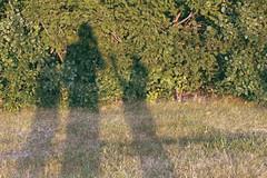 Cranbrook First Friday August 2015 (darianr) Tags: us unitedstates michigan bloomfieldhills