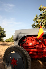 IMG_0386 (ACATCT) Tags: old espaa tractor spain traktor agosto toledo antiguo massey pistacho tembleque barreiros 2015 bustards perdices liebres avutardas ff30ds r350s