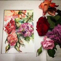 Day 490. The #rose #painting for today. #watercolour #watercolourakolamble #sketching #stilllife #flower #art #fabrianoartistico #hotpress #paper #dailyproject (akolamble) Tags: rose painting watercolour watercolourakolamble sketching stilllife flower art fabrianoartistico hotpress paper dailyproject