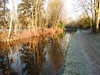Reflections............... Explored 05/01/17 (Nomadic074) Tags: reflections chesterfieldcanal retford nottinghamshire nature frost winter trees path