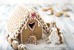 Christmas Gingerbread House (vanilllaph) Tags: gingerbread honey christmas house decorate decoration decorated sugar icing white sweet food cookie biscuit recipe ornate celebrate celebration celebrating holiday horizontal funny special baked culinary cook cookbook festive shiny heart shape