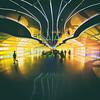 Sky's the Limit (Thomas Hawk) Tags: america chicago illinois michaelhayden ohareinternationalairport skysthelimit usa unitedairlines unitedstates unitedstatesofamerica airport neon fav10 fav25 fav50 fav100