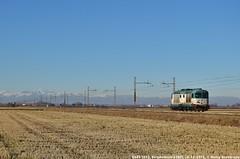D445 1015 (MattiaDeambrogio) Tags: treno treni train trains d445 1015 borgolavezzaro lis trenitalia cargo