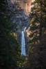 Dappled Falls (Michael Bandy) Tags: yosemite nationalpark california treeswaterfall falls landscape nature pine nikon