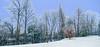 Winter -8- (Jan 1147) Tags: winter nature natuur sneeuw snow bomen trees outdoor buitenopname depinte belgium