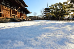 White carpet (Teruhide Tomori) Tags: 教王護国寺 東寺 京都 世界遺産 日本 五重塔 鳥居 神社 shrine torii sky snow winter 雪 冬 pagoda temple kyoto japan japon landscape worldheritage tojitemple architecture woodenbuilding construction