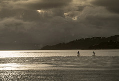 floaters on the tide (glasnevinz) Tags: newzealand wellington harbour sea sky cloud paddleboards