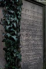 Worms, Jüdischer Friedhof Heiliger Sand (Sven Kapunkt) Tags: worms heiligersand friedhof friedhöfe cemetery cemeteries cimetière jüdisch rheinlandpfalz pfalz grab gräber