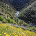 My Public Lands Roadtrip: North Fork American Wild and Scenic Rivers in California
