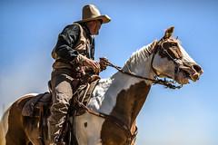 Desperados CMSA (Feddal Nora) Tags: ranch horse cowboy ride rifle champion arena cowgirl horseback colt horseriding desperado cmsa canonef70200 cowboymountedshootingassociation 45lcrevolvers 45lcrevolver 45coltcaliber 45caliberlongcolts