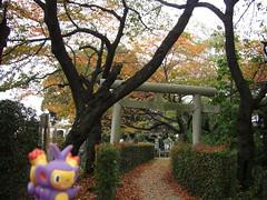 Ambipom in Kasukabe, Saitama 12 (Kasadera) Tags: toys figure pokemon pokmon  kasukabe   pokemonkids  ambipom     ambidiffel capidextre