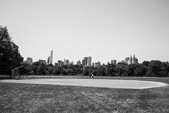 NYC (georgemstadler) Tags: street nyc newyorkcity travel usa ny newyork skyline america nikon baseball centralpark manhattan streetphotography bigapple nikonians nikond3100 georgemstadler