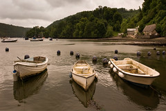 Dittisham. (Andy Bracey -) Tags: summer holiday landscape boat cottage estuary devon dart greyday dingy riverdart dittisham bracey andybracey
