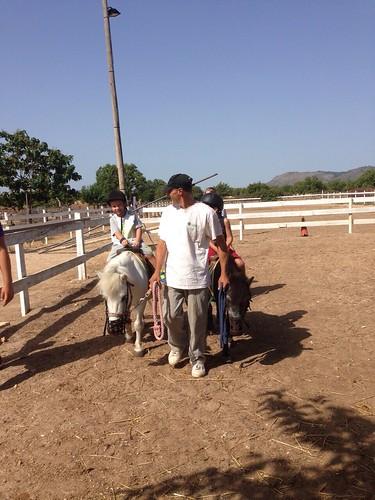 Horses_The Paula Method_10