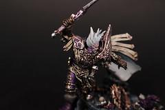 Fulgrim (AdmGR) Tags: game painting miniature model character gaming warhammer wargame warhammer40000 warhammer40k gamesworkshop wh40k emperorschildren forgeworld primarch horusheresy fulgrim warhammer30k