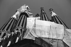 Sagrada (marco_palmieri) Tags: barcelona travel blackandwhite art church familia architecture zeiss temple spain sony religion grain modernism catalunya es sagradafamilia build sagrada biancoenero modernisme gaudì ancientandmodern carlzeiss workinprogres variosonnart282470 rx100m3