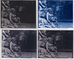 parco ducale parma (Giorgio Bordin) Tags: altprocesses lith film cyanotype toning gallic tannic acid bleach