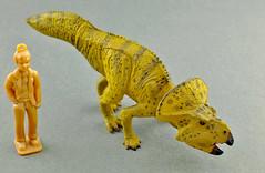 Protoceratops (RobinGoodfellow_(m)) Tags: kaiyodo protoceratops uha club