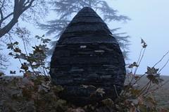 Goldsworthy (Nanxsie) Tags: goldsworthy sculpture art pinecone nature contemporary fog eerie andygoldsworthy chaumont chateau loire desurloire plant pineal