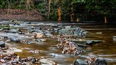 2017-01-17 Rivelin-7420.jpg (Elf Call) Tags: nikon rivelin river yorkshire water stream 18105 sheffield steppingstones waterfall d7200 blurred