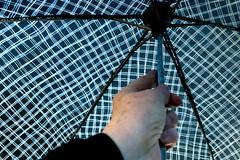 8. Rainwear (pollylew) Tags: 116picturesin2016 8 rainwear
