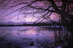 """ Sunrice Dreiländersee "" (Kalbonsai) Tags: dreiländersee germany waterscape outdoorphotography naturshot sunrice water color sky wolken nikon d5100 1685mm cold sneeuw schnee snow"