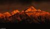 Sunrise over Mount Kanchenjunga.. (Sougata2013) Tags: sillerygaon darjeeling westbengal india kanchenjungarange mountkanchenjunga mightykanchenjunga sunrise colours nature nikond7200